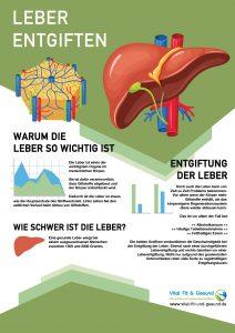 Leber entgiften Infografik
