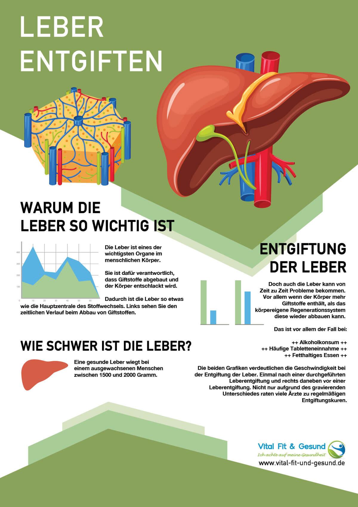 Leber entgiften schützt vor Überlastung - Vital Fit & Gesund