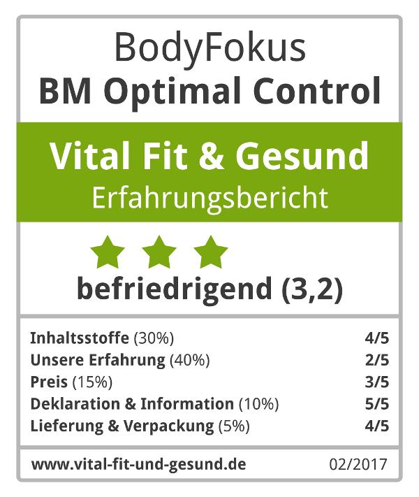 BM Optimal Control Siegel
