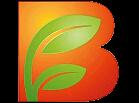 BodyFokus Logo