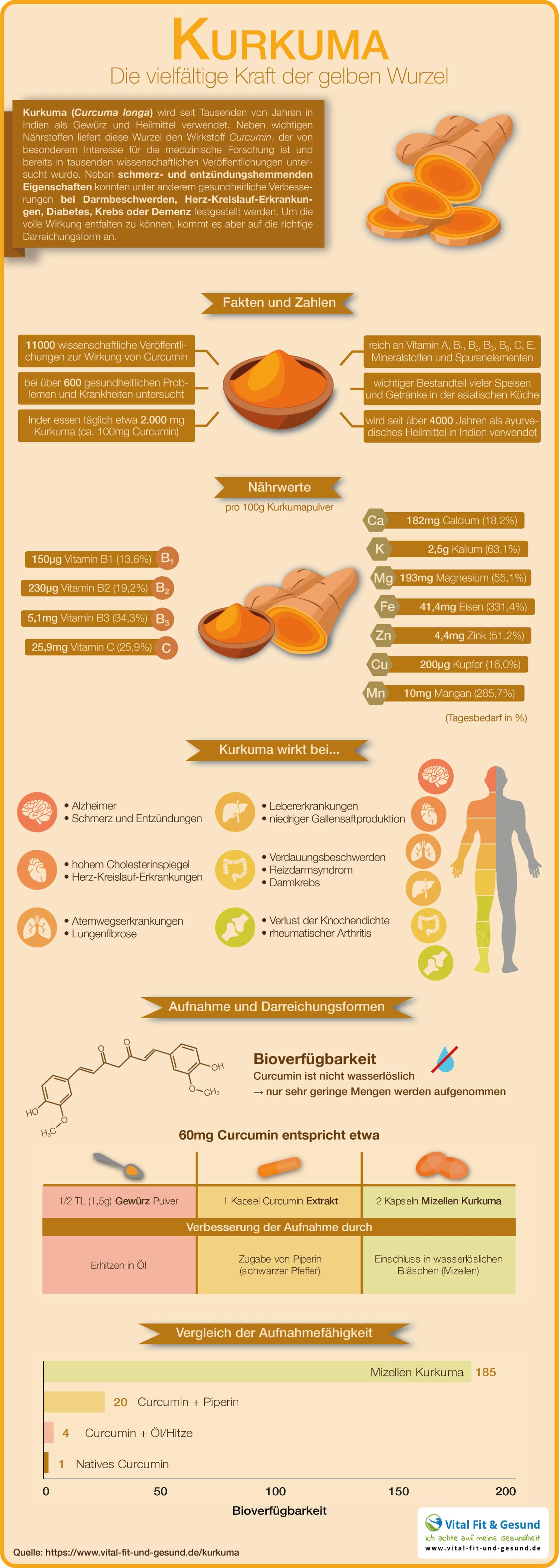 Kurkuma Infografik